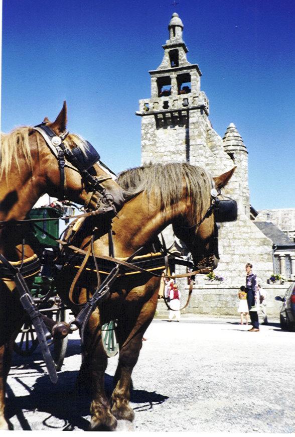 chevaux_devant_l_eglise